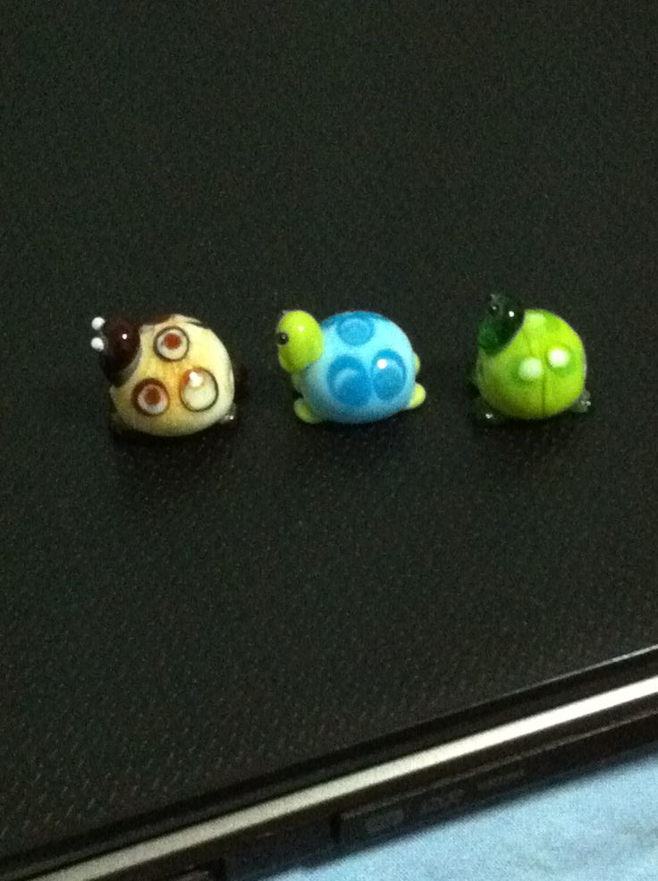 Cam kaplumbağalarım.