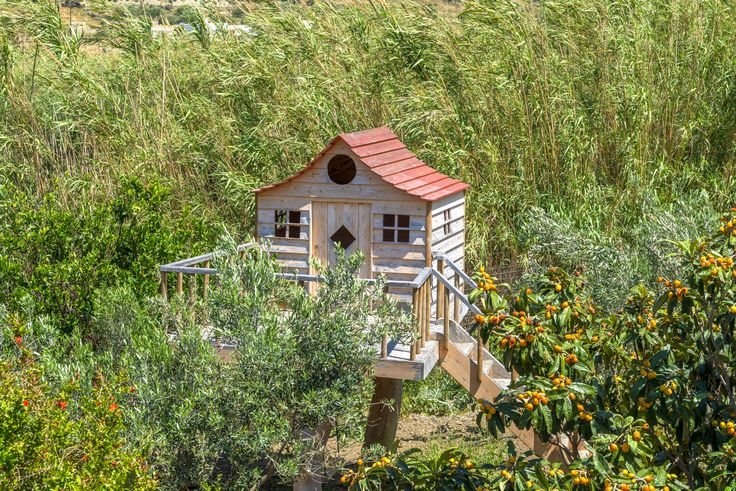 Dreamy Tree House - Alternative Summer Holidays - Naxos, Greece