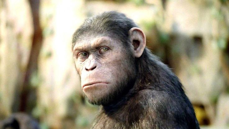Stream Rise of the Planet of the Apes Full Movie