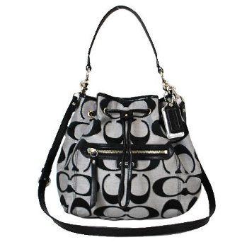 Coach 25676 Daisy Outline Signature Metallic Drawstring Shoulder Bag 15