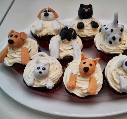 I made these cupcakes for the RSPCA Cupcake day.  They were the first cupcakes to go in the sale.