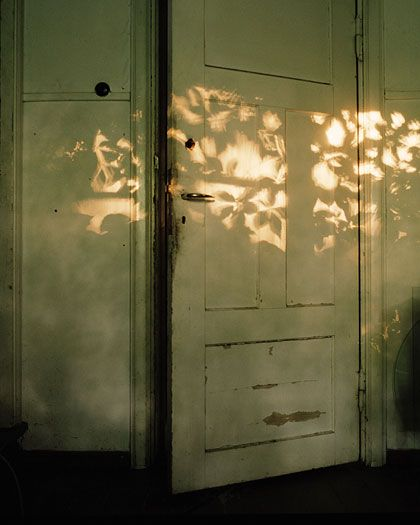 the sun's beauty falls on everything///  photo Ida Pimenoff