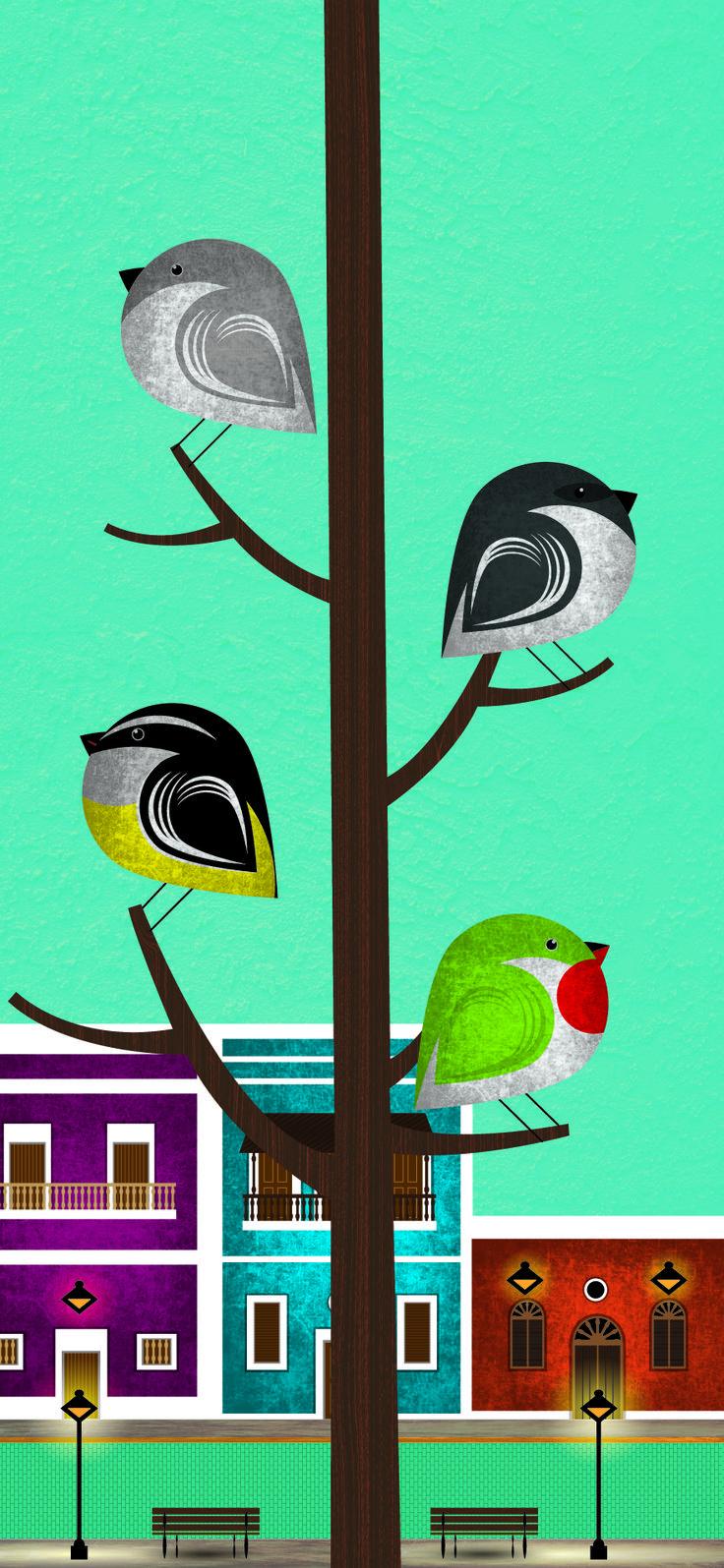 06-Birds_of_San_Juan