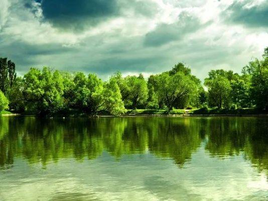 stromy obrázky, jezero tapety, letní vektor, mraky fotky, pobřeží zázemím…