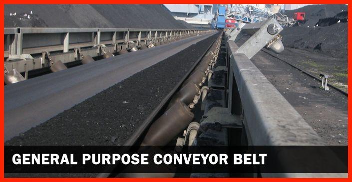 http://www.conveyor.co.in