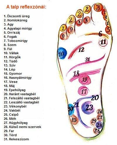 A lábfej és a test kapcsolata - MindenegybenBlog