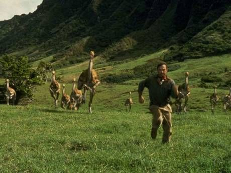 a comparison of the book and movie jurassic park Makes fun/tells about books and movies book and movie related search this site home disney's tangled (film)  a theme park called jurassic park,.