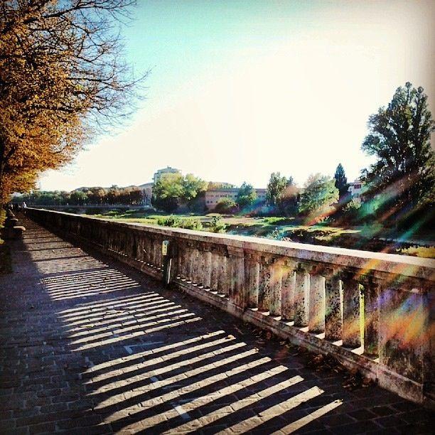 @dani_prosciutta Parma, Mon Amour | #myER_andMe: foto finaliste