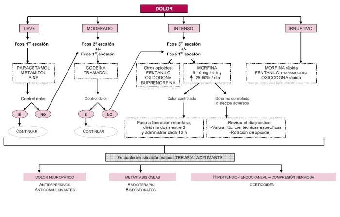 Figura 5. Algoritmo de tratamiento del dolor en CP