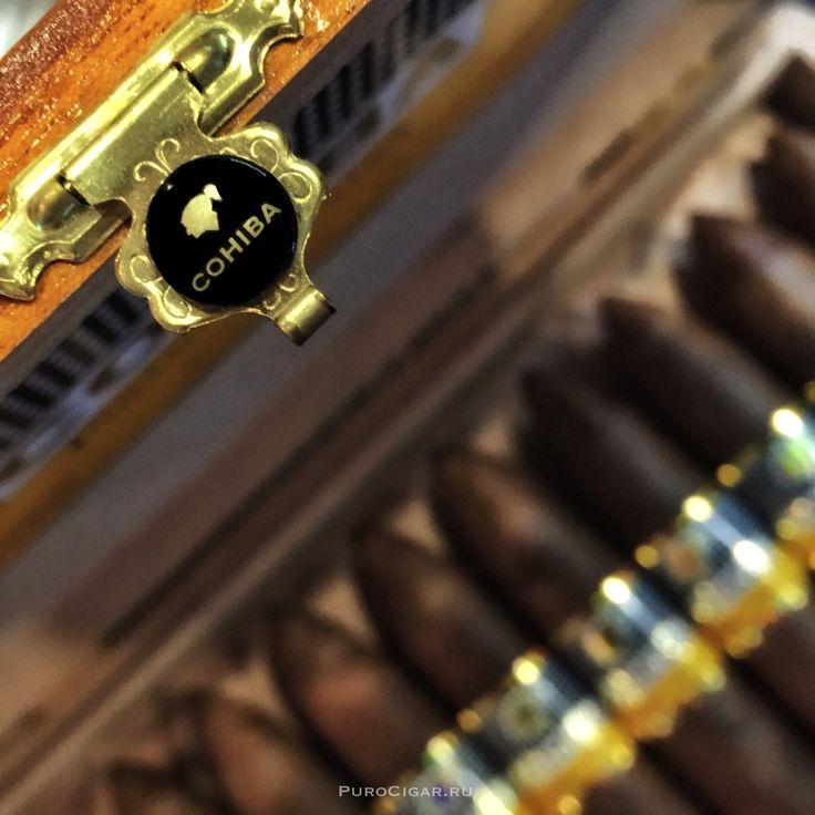Кубинские сигары Cohiba Piramides Extra, впервые были представлены миру на XIV Festival del Habanoв феврале 2012 года, пополнили гамму Linea Clasica, первой и основополагающей линейки марки Cohiba. С апреля 2013 года эти сигары впервые представлены в России.