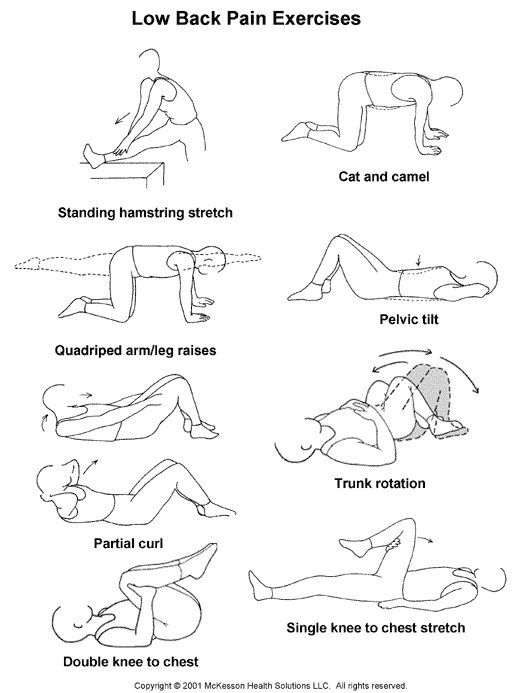 Exercise To Strengthen Back Exercises To Strengthen Lower Back - Lumbar Extender Back Stretcher ...