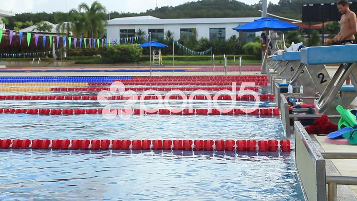 olympic size swimming pool lanes diving platforms swimmers - Olympic Swimming Pool Lanes