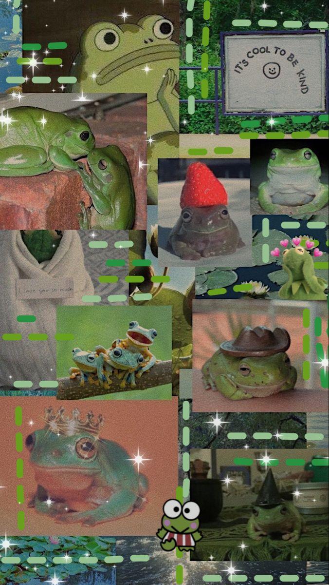 Frog Aesthetic Wallpaper Frog Wallpaper Cute Frogs Cute Wallpapers