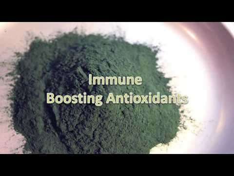 What is Spirulina؟ A Protein rich Top Superfood Algae