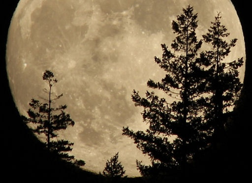"""There's a full Moon, the """"Thunder Moon,"""" named after the electrical storms of summer. David Hoffmann photographed the waxing Thunder Moon las… 