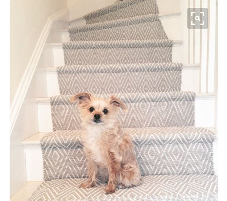 White stairs with carpet doesn't look so weird after all. This could be an easy solution!