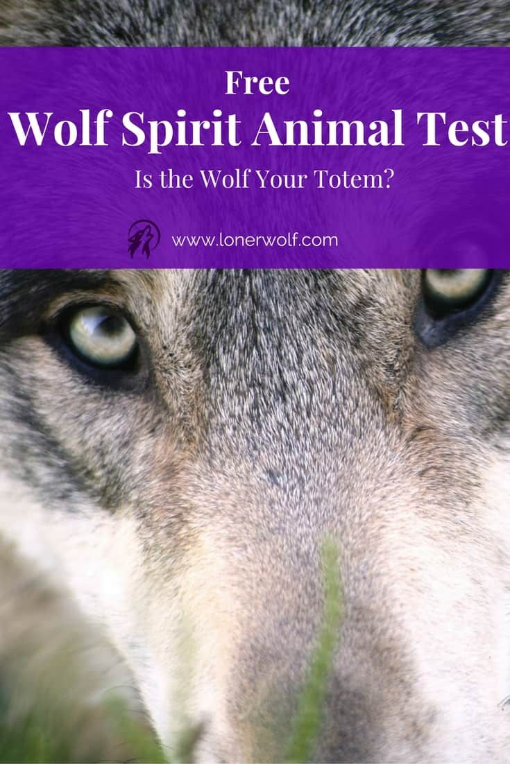 Is the Wolf your personal Spirit Animal or animal totem?  Take our free Wolf Spirit Animal Test to discover your unique percentage score! via @LonerWolf