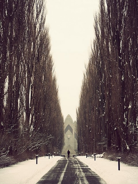 The rising poplar trees rustled in the wind, showering him with light snow.  He ran faster toward the chapel ahead as he heard the bells ringing.