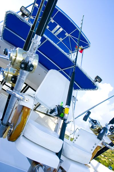 Book a deep sea fishing excursion, for an experience you will never forget!