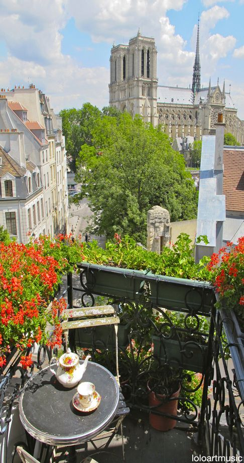 View of Notre Dame from the terrace ~ Paris, France