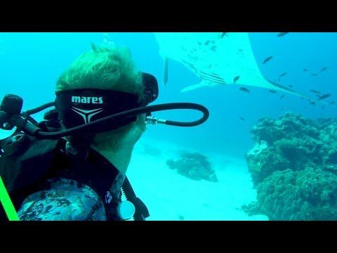 Island hopping through the Southern Great Barrier Reef - YouTube