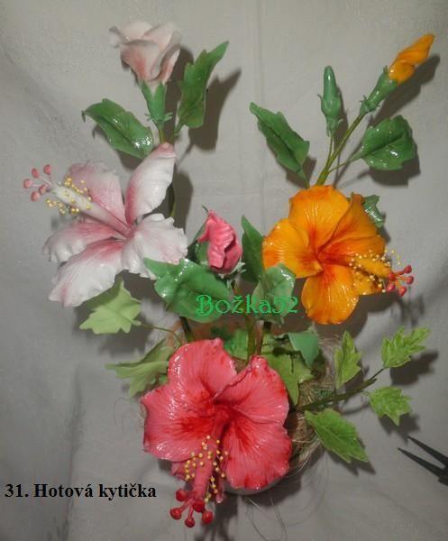 Ibištek čínsky , Kvety, fotopostupy | Tortyodmamy.sk