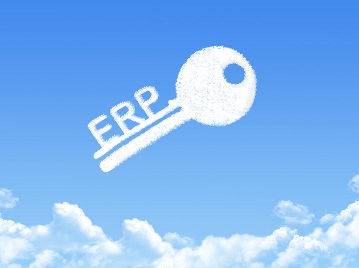 Microsfot Dynamics 365 ERP ile üst yönetim bilgi entegrasyonu sağlanır. Bunun yanı sıra güncel bilgiye hızlı erişim, tedarik zincirinde kontrol, arz ve talep entegrasyonu, lojistik süreçlerle mali süreçlerin entegrasyonu ve işletme faaliyetleri üzerinde genel kabul görmüş denetim kolaylığı sayılabilecek diğer yararlarıdır.