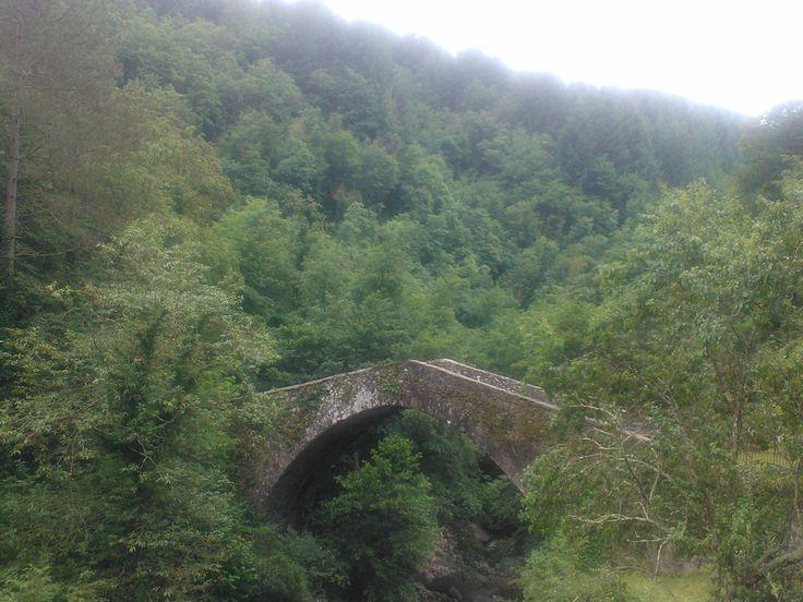 ponte del mulino