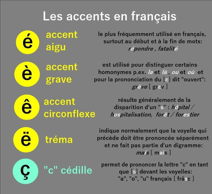 Image result for french word trema accent