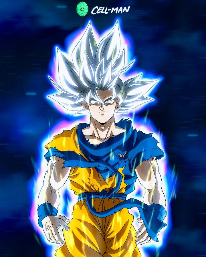 Goku Ultra Instinct Mastered Dragon Ball Super Dragon Ball Super Goku Dragon Ball Super Art Anime Dragon Ball Super