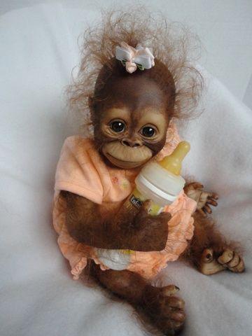 Sütle beslenen Bebek Orangutan
