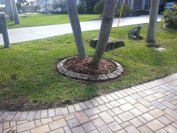 88 best fort myers curbing images on pinterest for Landscaping rocks fort myers fl