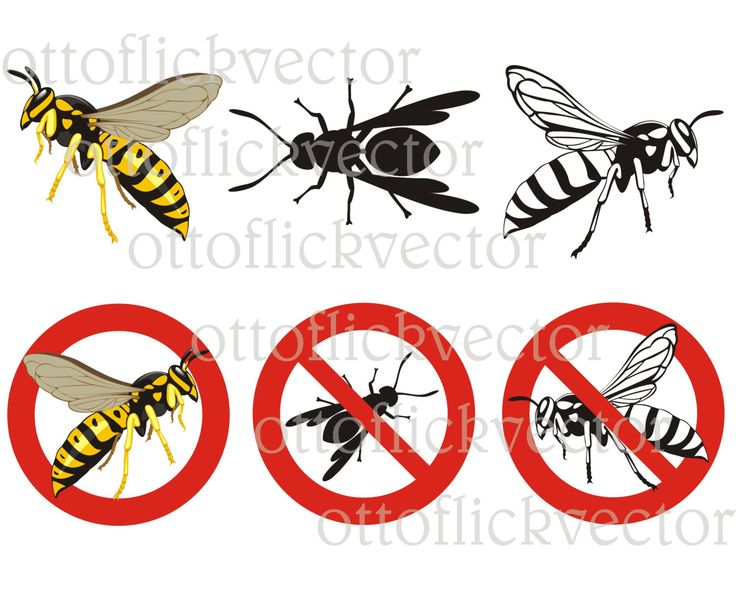 WASP HORNET Vector CLIPART, warning signs, bug, insect, insecticide eps, ai, cdr, png, jpg, hornet combat icons by ottoflickvector on Etsy