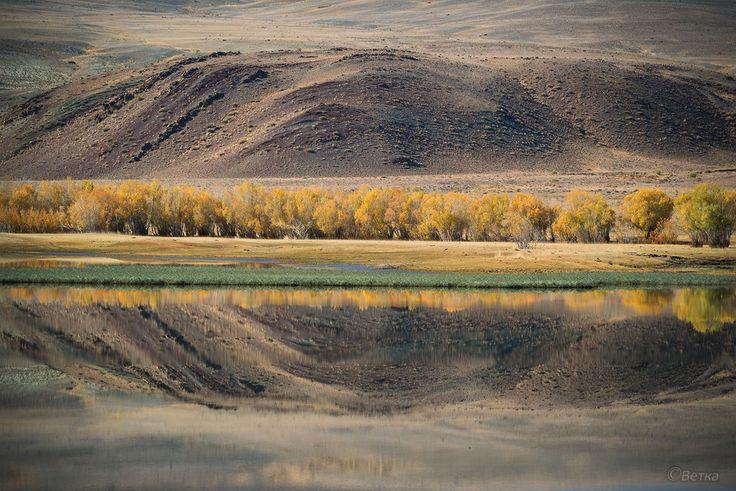 Зеркальные миры Красногорского озера, Горный Алтай
