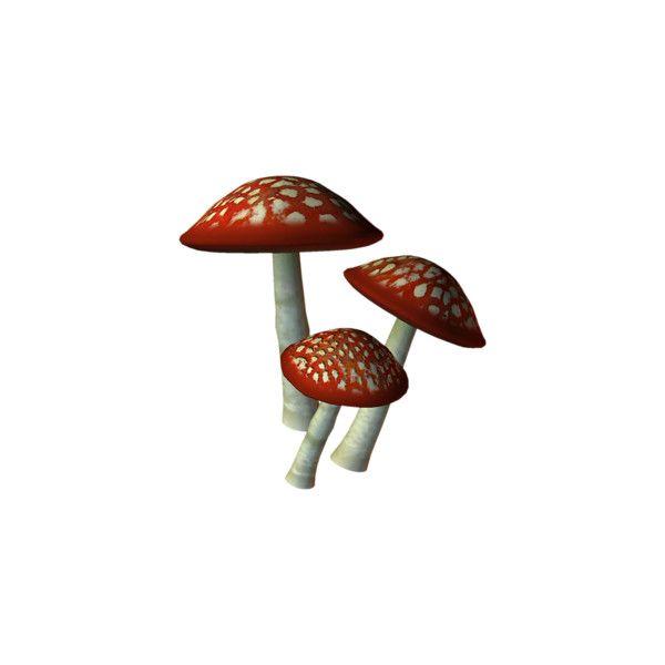 Medilium — альбом «Сказочная тема / Fairy Tale» на Яндекс.Фотках ❤ liked on Polyvore featuring mushrooms, fairies, fantasy, plants and ガーデンきのこ
