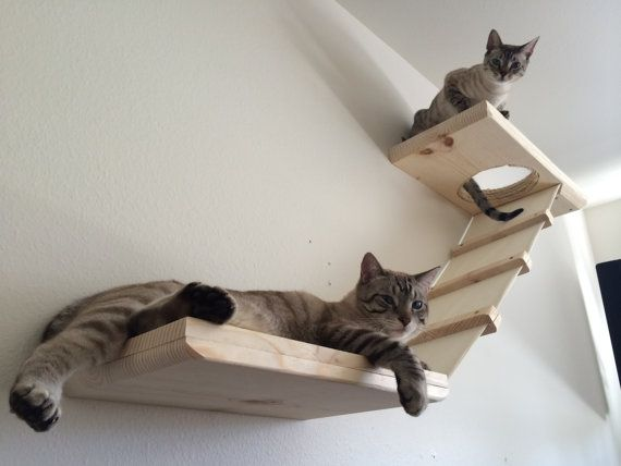 Stylish Cat Wall Shelf w/ Stretched Fabric by CatastrophiCreations                                                                                                                                                                                 More