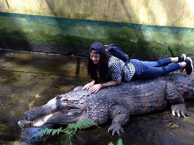 Kunjungi Kebun Binatang, Raline Shah Peluk Buaya Tua - http://www.rancahpost.co.id/20160656919/kunjungi-kebun-binatang-raline-shah-peluk-buaya-tua/