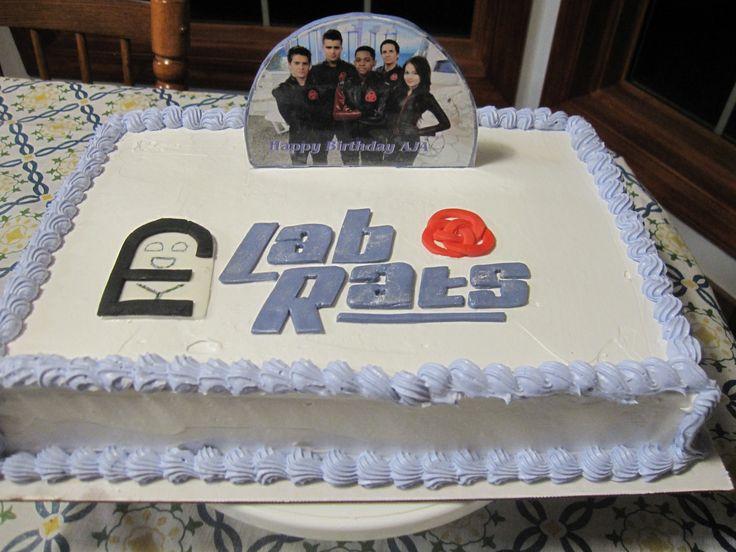 Lab Rats Birthday Cake Birthday Cakes Lab Rats Cake Rats