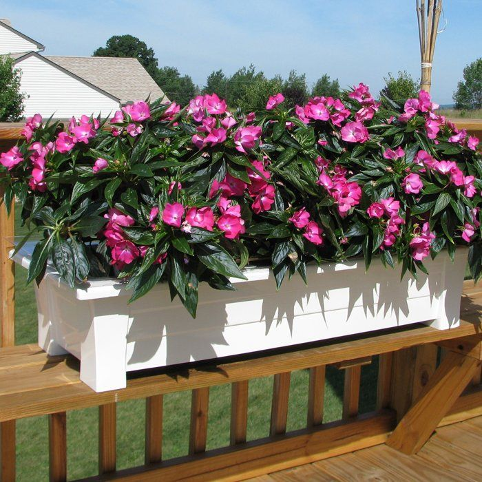 You'll love the Resin Planter Box at Wayfair - Great Deals on all Outdoor products with Free Shipping on most stuff, even the big stuff.