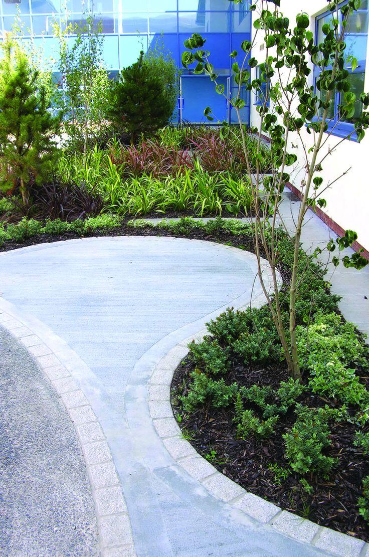 Dingle Nurseries: Trees / shrubs, Bradley Stoke Community School, Bristol 1 of 1