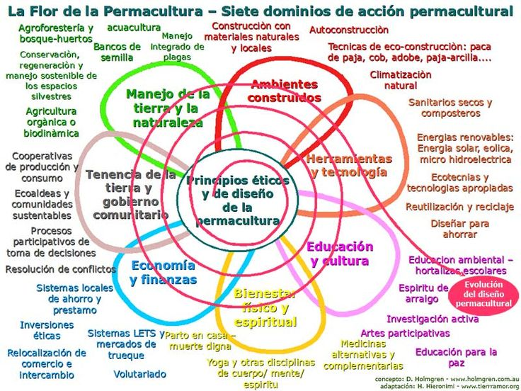 ¿Qué es la Permacultura? #agricultura #ecologia