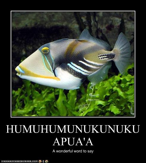 It is a wonderful word to say humuhumunukunukuapua 39 a for Is fishes a word