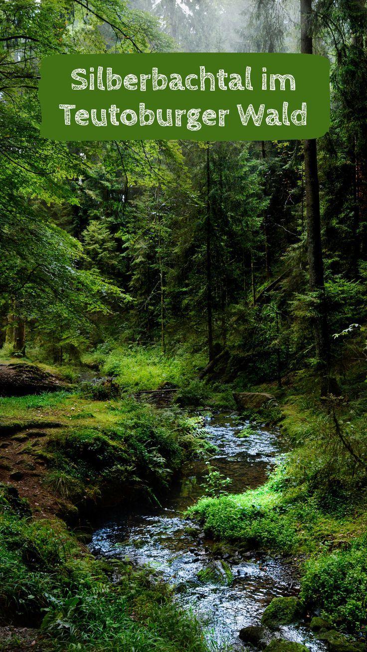 Den Teutoburger Wald entdecken – 3 besondere Ausflugsziele