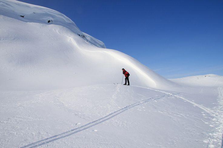 Strålende vinterdag i Sulitjelma, Fauske
