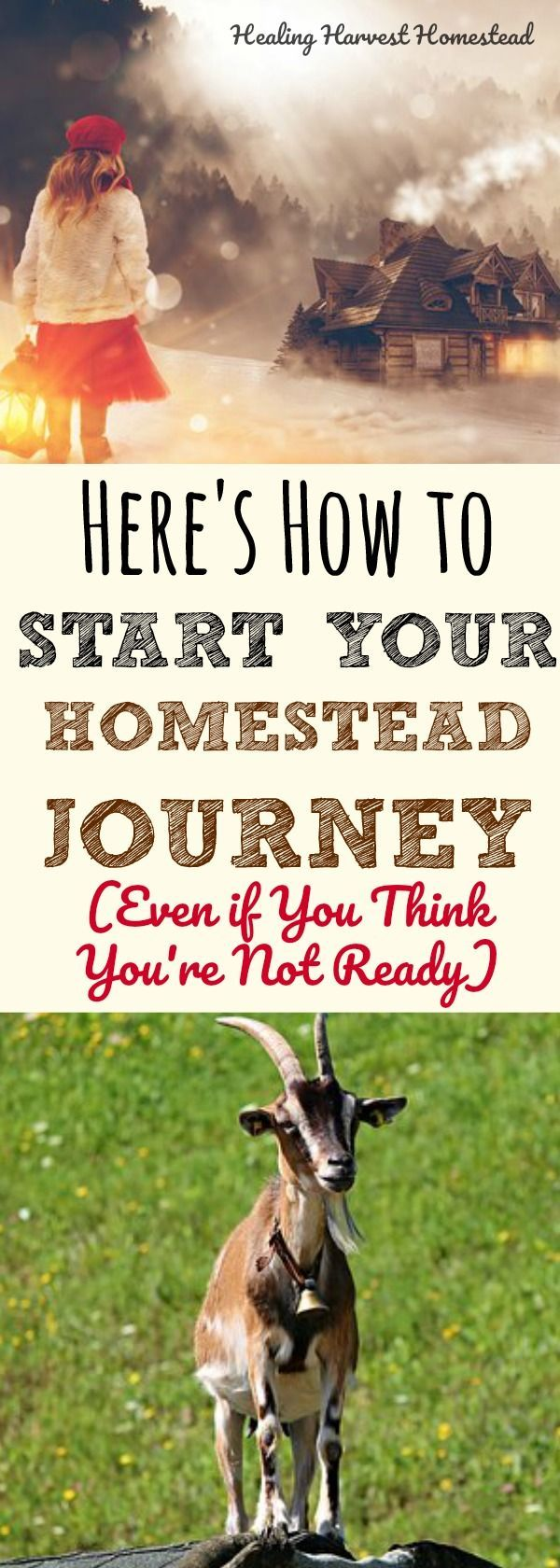 Are you homestead dreaming? Do you want to simplify your life? Do you want to live more traditionally and be more self-sufficient? Here's how we began our own homestead journey a few years ago...And here is how you can start your own homesteading life, no matter where you live! Find out the step-by-steps and directions to get started on your homestead lifestyle.