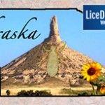 Nebraska+Lice+Removal+Service