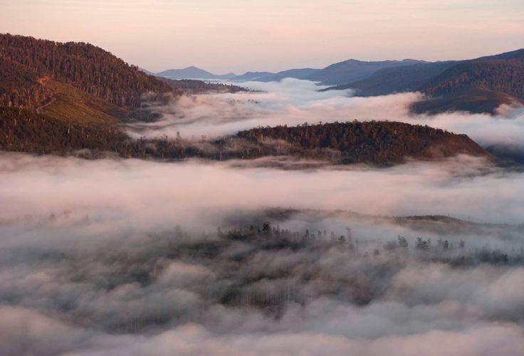 Wallpaper: Huon Valley, Tasmania - Australian Geographic
