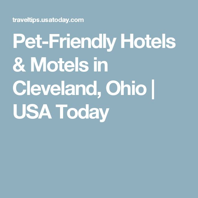 Pet Friendly Hotels Motels In Cleveland Ohio Hotel Motel And
