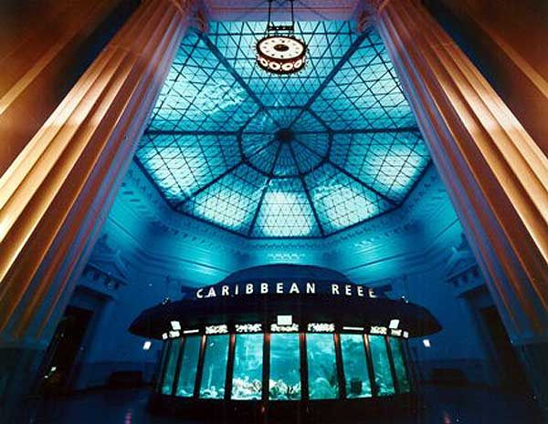 Shedd Aquarium, in Chicago. The room with a tank under the rotunda is remarkable.