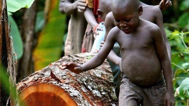 Uganda ist als grünes, fruchtbares Land am Äquator bekannt – bisher. Es droht…